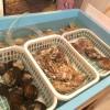 函館「藤田商店」水槽の貝やたくさんの野菜にワクワク!視覚的に愉しい八百屋の二毛作立ち飲み